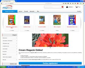magazin online - demo